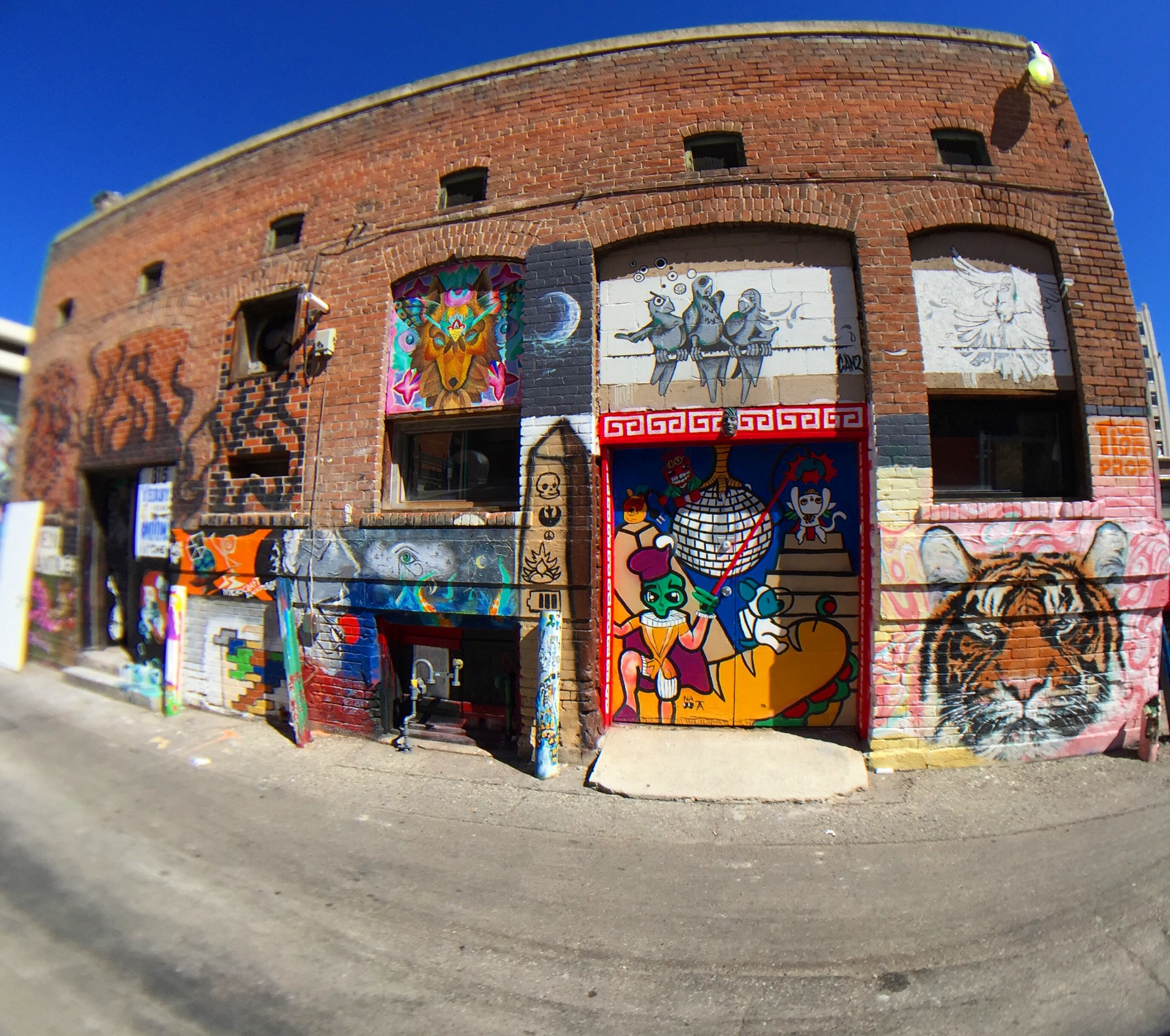 Freak Alley Fisheye